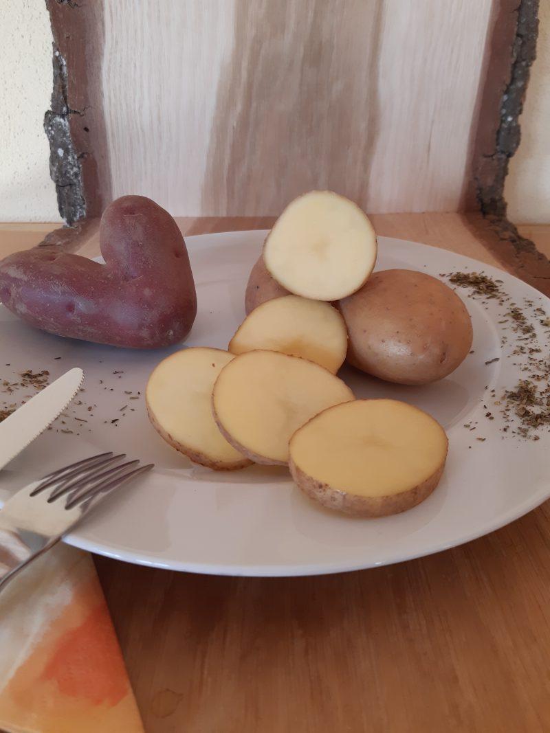 Kartoffel Melody